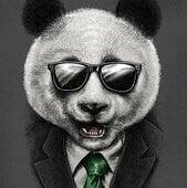 BC_Panda